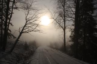 Winter sun, road, fog